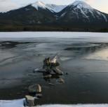 Banff 556